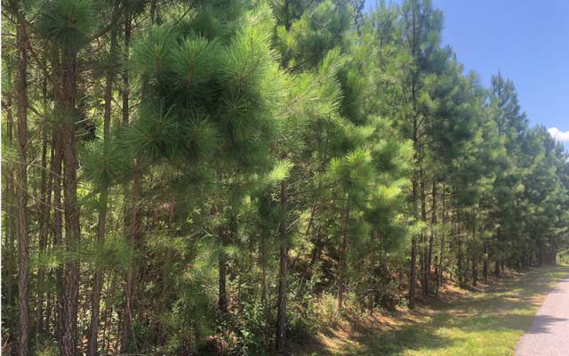 37 Loftis Mountain, Blairsville, GA 30512 (MLS #290672) :: RE/MAX Town & Country