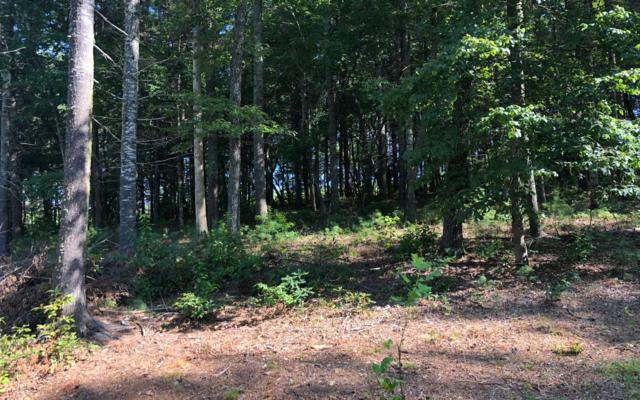 LOT23 Fox Lake Road, Blairsville, GA 30512 (MLS #290675) :: RE/MAX Town & Country