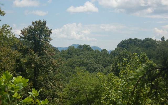LT 35 Holly Berry, Hayesville, NC 28904 (MLS #290688) :: Path & Post Real Estate