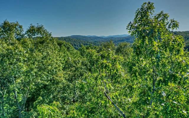 L 14 Toccoa Riverbend Est, Blue Ridge, GA 30513 (MLS #291225) :: RE/MAX Town & Country