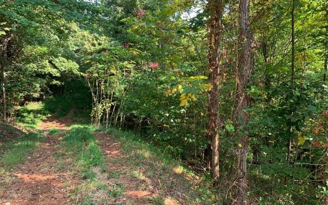 LT 23 Bear Paw Lane, Hiawassee, GA 30546 (MLS #291841) :: RE/MAX Town & Country
