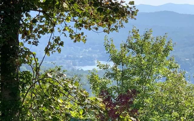 LT 10 Summit Trail, Hiawassee, GA 30546 (MLS #291843) :: RE/MAX Town & Country