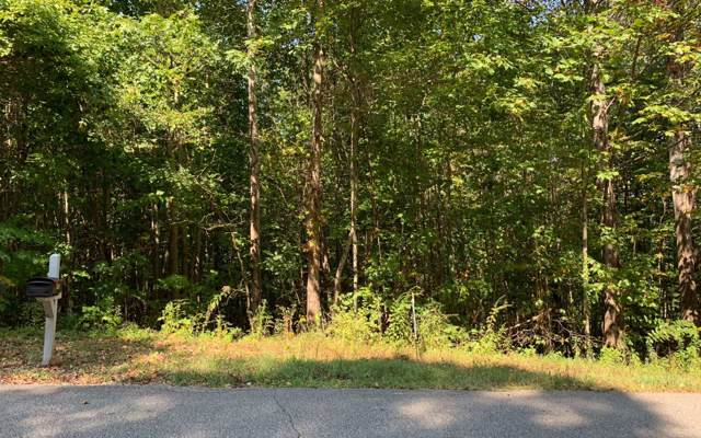 LT 26 Lake Forest Estates, Hiawassee, GA 30546 (MLS #291860) :: RE/MAX Town & Country