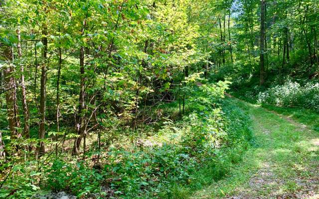 38 Spring Cove Lot 38, Blairsville, GA 30512 (MLS #291867) :: Path & Post Real Estate