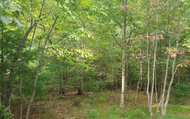 Warnock Mtn Acres, Blairsville, GA 30512 (MLS #291874) :: RE/MAX Town & Country