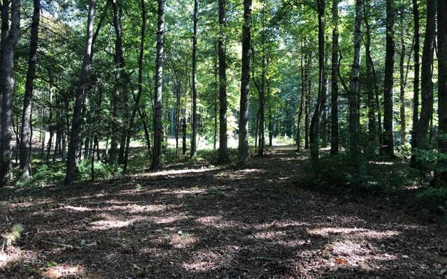 LOT 9 Fox Lake, Blairsville, GA 30512 (MLS #291896) :: RE/MAX Town & Country
