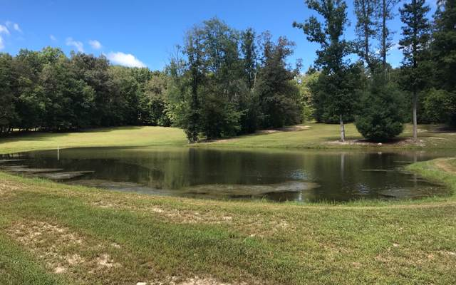 Oakey Ridge Rd, Morganton, GA 30560 (MLS #291999) :: RE/MAX Town & Country