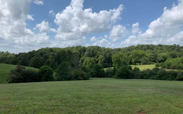 LT 75 Cider Knob, Fox Lake, Blairsville, GA 30512 (MLS #292004) :: RE/MAX Town & Country
