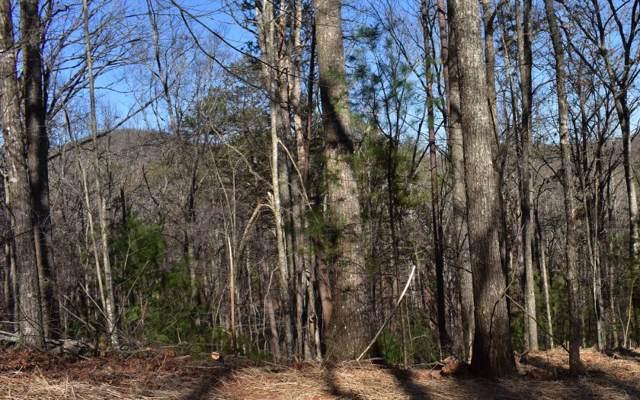 Rabbit Rdg, Murphy, NC 28906 (MLS #292010) :: Path & Post Real Estate