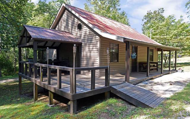 393 Johnson Cove Road, Copperhill, TN 37317 (MLS #292018) :: RE/MAX Town & Country