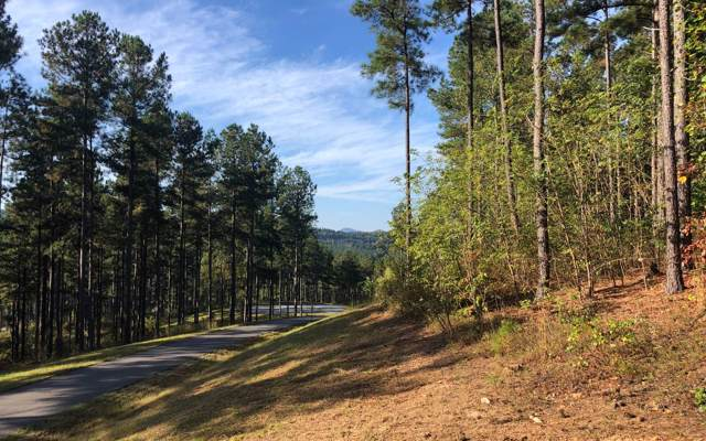 LT176 Thirteen Hundred, Blairsville, GA 30512 (MLS #292392) :: RE/MAX Town & Country