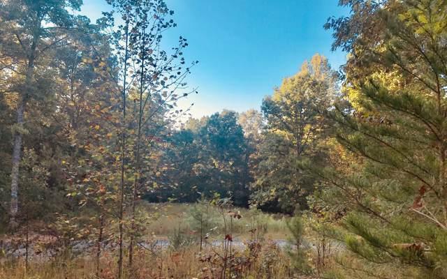 LT 49 Ivy Log Estates, Blairsville, GA 30512 (MLS #292500) :: RE/MAX Town & Country