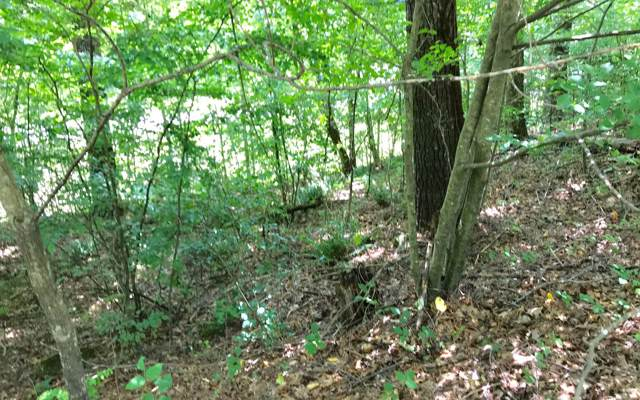 LOT A Highland Falls Cotta, Blairsville, GA 30512 (MLS #292586) :: Path & Post Real Estate