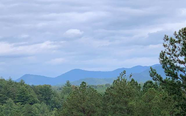 LT290 Thirteen Hundred, Blairsville, GA 30512 (MLS #292648) :: RE/MAX Town & Country