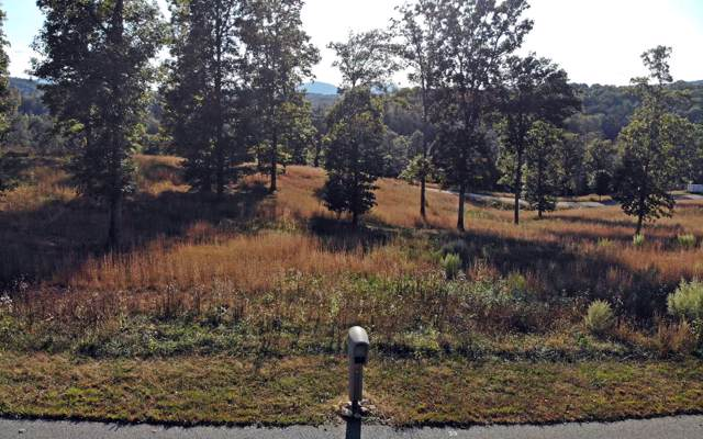 LOT39 Riverside Lk Nottely, Blairsville, GA 30512 (MLS #292664) :: RE/MAX Town & Country
