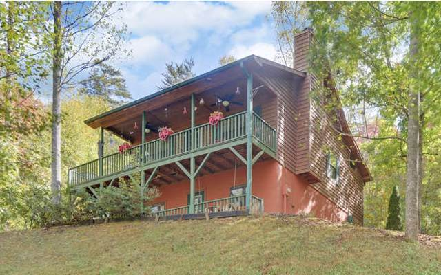 1502 Millennium Drive, Young Harris, GA 30512 (MLS #292844) :: RE/MAX Town & Country