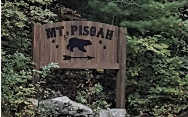 LOT39 Mangums Trail, Blue Ridge, GA 30513 (MLS #292939) :: Path & Post Real Estate
