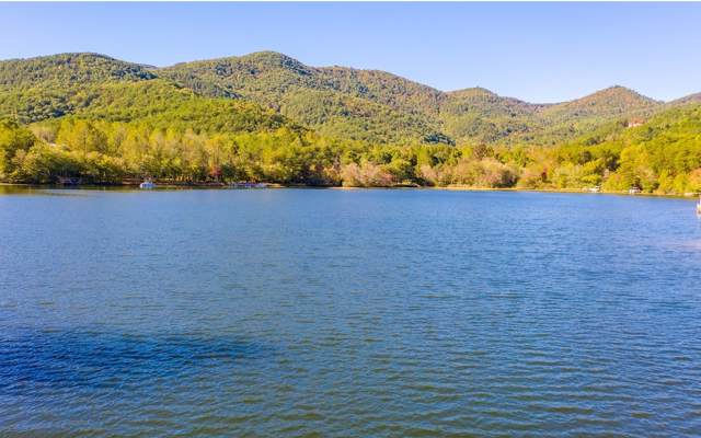 225 Lakeview Drive, Turtletown, TN 37391 (MLS #292950) :: RE/MAX Town & Country