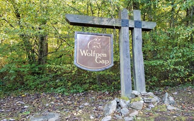 LOT 9 Wolfpen Gap, Hiawassee, GA 30546 (MLS #292951) :: RE/MAX Town & Country