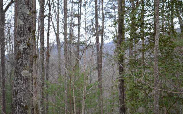 205 Woodsong Haven, Turtletown, TN 37391 (MLS #293088) :: Path & Post Real Estate