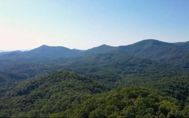 Top Horseshoe Ridge, Murphy, NC 28906 (MLS #293162) :: RE/MAX Town & Country