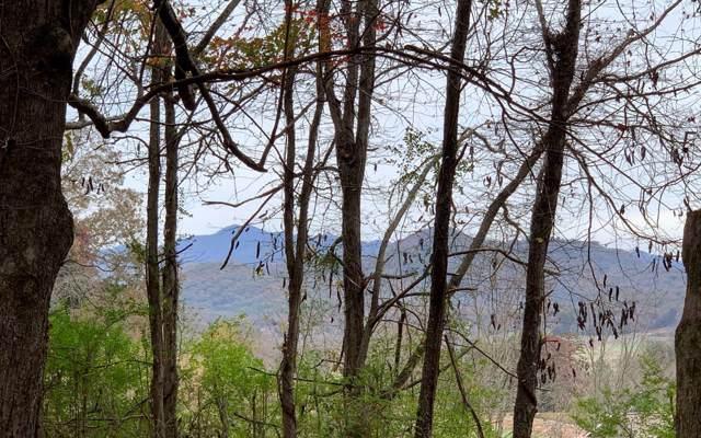 LOT43 Timber Ridge Lane, Hayesville, NC 28904 (MLS #293277) :: RE/MAX Town & Country