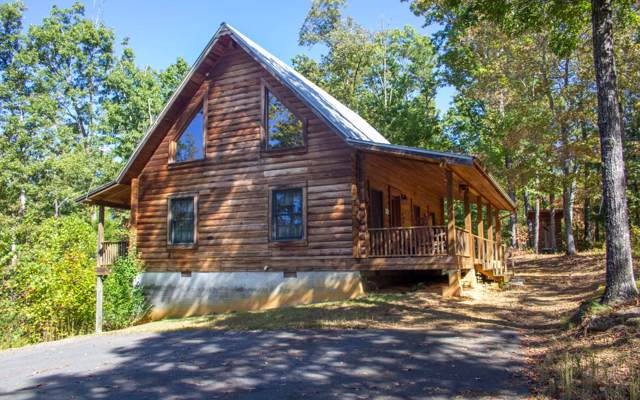 706 Pleasant Valley Road, Murphy, NC 28906 (MLS #293300) :: RE/MAX Town & Country