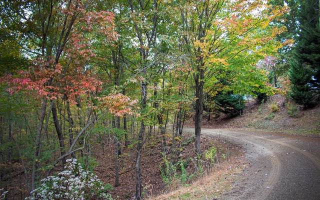32 B Forest Edge View, Murphy, NC 28906 (MLS #293303) :: Path & Post Real Estate