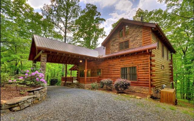 594 Mountain Rivers Lane, Mineral Bluff, GA 30559 (MLS #293339) :: RE/MAX Town & Country