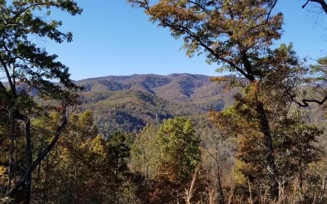 5 Summit Ridge Trail, Marble, NC 28905 (MLS #293342) :: Path & Post Real Estate