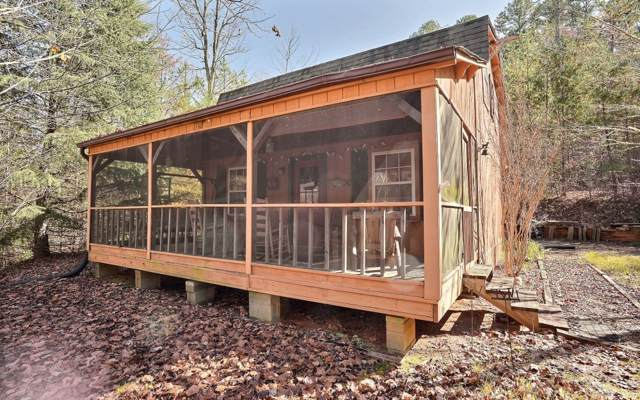 710 Chase Mountain Rd, Blue Ridge, GA 30513 (MLS #293414) :: RE/MAX Town & Country