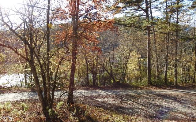 25+AC N Toccoa River Road, Mineral Bluff, GA 30559 (MLS #293421) :: RE/MAX Town & Country