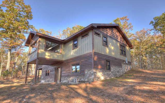 315 Old Salem Road, Mineral Bluff, GA 30559 (MLS #293428) :: RE/MAX Town & Country