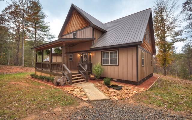 308 Chestnut Gap Lane, Blue Ridge, GA 30513 (MLS #293522) :: RE/MAX Town & Country