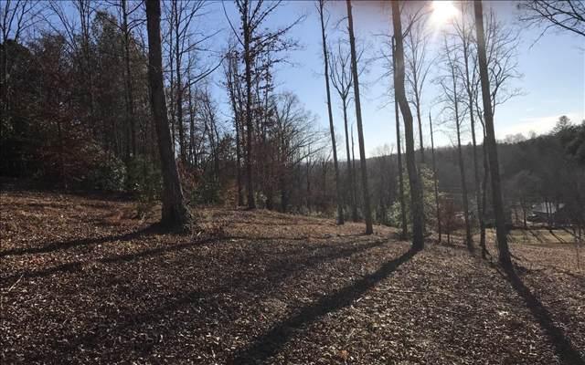 7.5AC Deer Run Trail, Blairsville, GA 30512 (MLS #293530) :: RE/MAX Town & Country