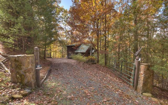 470 The Forest Has Eyes, Blue Ridge, GA 30513 (MLS #293538) :: RE/MAX Town & Country