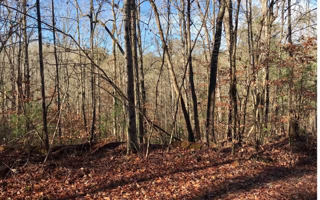 0 Odessa Court, Ellijay, GA 30540 (MLS #293556) :: RE/MAX Town & Country