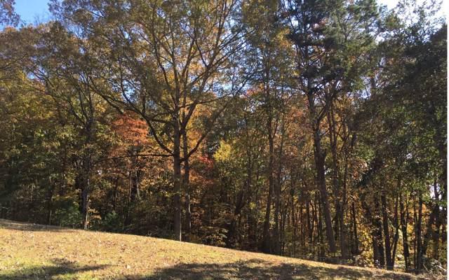 Chatsworth Hwy, Ellijay, GA 30540 (MLS #293584) :: RE/MAX Town & Country