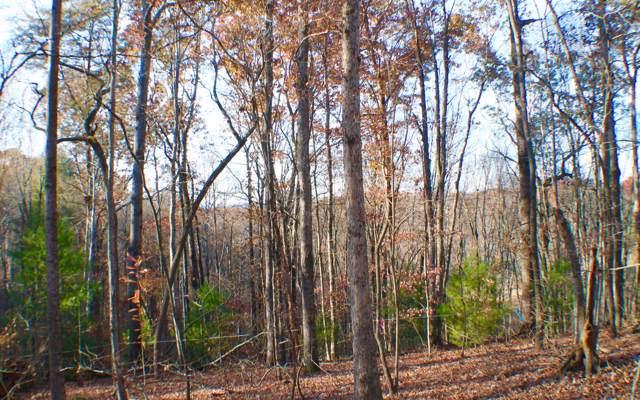 Quiet Lane, Blue Ridge, GA 30513 (MLS #293597) :: RE/MAX Town & Country