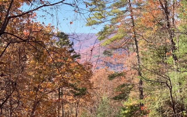 LT 49 Fires Creek Cove, Hayesville, NC 28904 (MLS #293660) :: RE/MAX Town & Country
