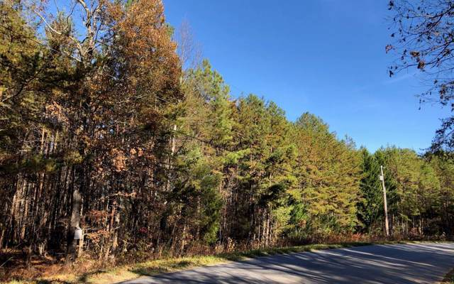 LT 73 Mountain View Road, McCaysville, GA 30555 (MLS #293682) :: RE/MAX Town & Country