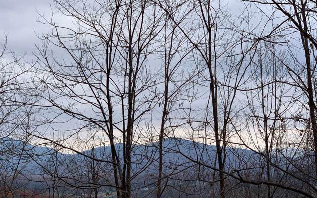 LOT 8 Woods Of Hunter, Hayesville, NC 28904 (MLS #293683) :: RE/MAX Town & Country