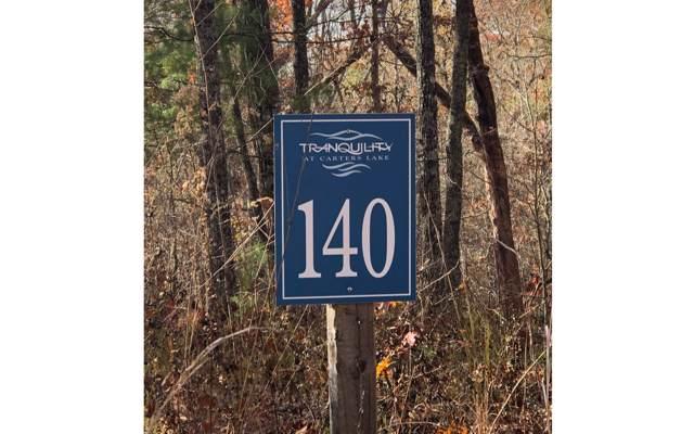 140 Laurel Trail, Ellijay, GA 30540 (MLS #293785) :: RE/MAX Town & Country