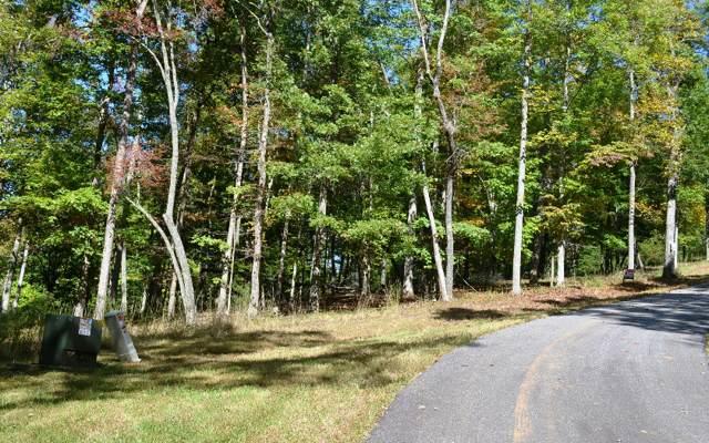 19 Mystic Ridge (Lt 19), Blairsville, GA 30512 (MLS #293821) :: Path & Post Real Estate