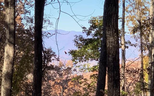 LT 86 Rocky Knob Estates, Young Harris, GA 30582 (MLS #293853) :: RE/MAX Town & Country