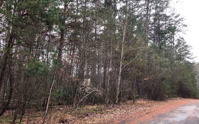 LT 15 Autumn Ridge, Mineral Bluff, GA 30559 (MLS #293857) :: RE/MAX Town & Country
