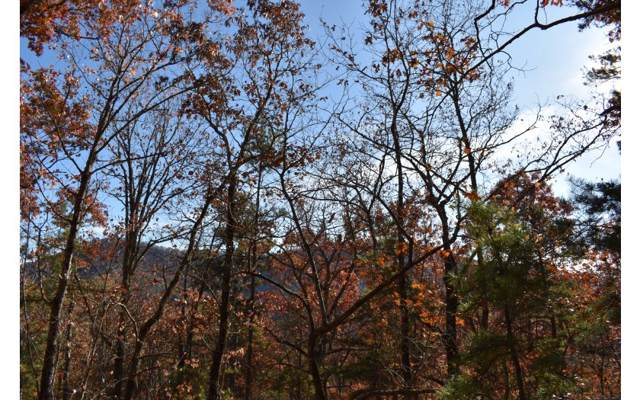 Brasstown, NC 28902 :: Path & Post Real Estate