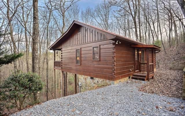 44 Amber Ridge Rd, Cherry Log, GA 30522 (MLS #293892) :: RE/MAX Town & Country