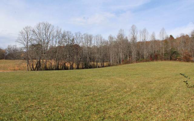 Downings Place, Hayesville, NC 28904 (MLS #293899) :: Path & Post Real Estate