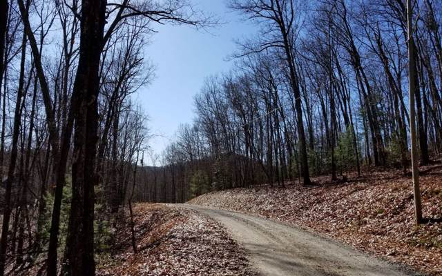 90 Laurel Circle, Blue Ridge, GA 30513 (MLS #293909) :: RE/MAX Town & Country